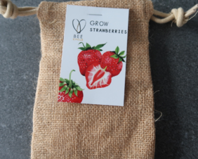 Grow your own strawberry plant Gift Tin